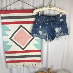 BDG Urban Outfitters Distressed Shorts